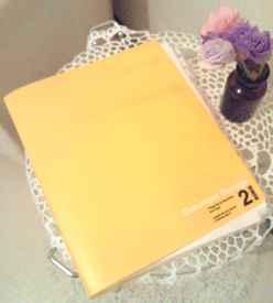 黄色ファイル